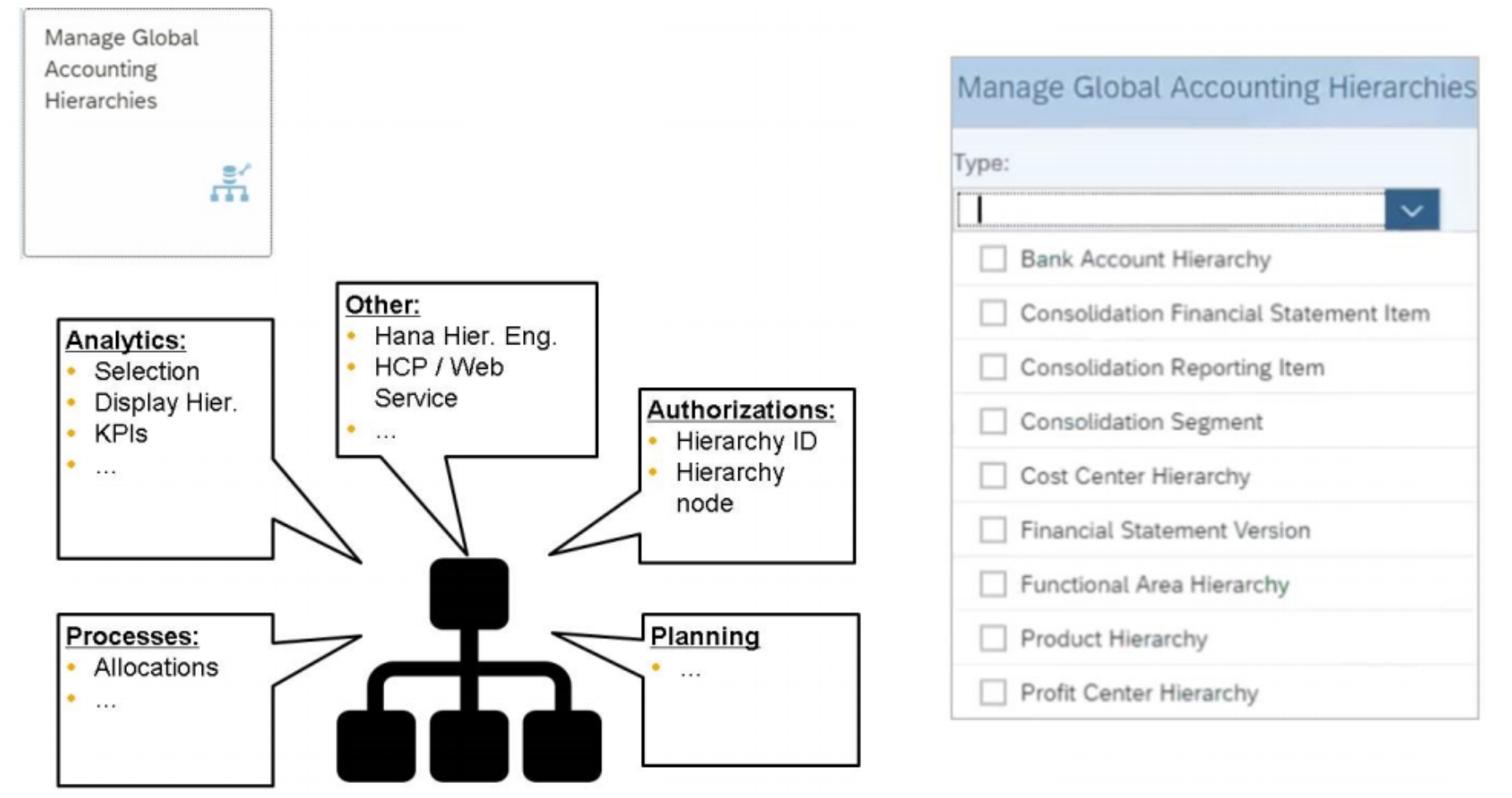 Global Accounting Hierarchies